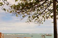 Feliz Semana (Ruby Ferreira ) Tags: boats barcos praia beach almond amendoeira silhuetas silhouettes cu sky praiaocenica northeastbrazilian