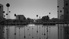 Le bassin de Takis (Mi che le) Tags: ladefnse paris parigi arcdetriomphe lebassindetakis riflessi reflection