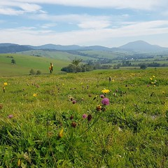 View of #Slovakia from #Poland. Green fields near Czyrna Wyna #travel (Joo Leito  Nomad Revelations) Tags: travel traveling blogger explore world tourism adventure instagram