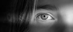 The Eye in a sunbeam .. (lichtspur) Tags: sunbeam rays eye auge licht schatten blackwhite whiteblack schwarz schwarzweiss art kunst blick glance exposure superb fine colourless bw zoom isolated closeup portrait