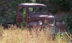 Rusty Dodge Truck (Larry Myhre) Tags: truck rusty abandoned vintage kaslo britishcolumbia dodge bcalbertasept2016