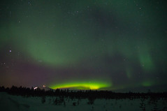 Northern lights over Ylls (TimoOK) Tags: sky green night lapland nort