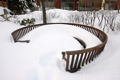 Winter Storm Nemo (nd-n) Tags: winter cambridge snow boston massachusetts snowstorm blizzard winterstorm noreaster winterstormnemo blizzardof2013