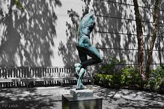 Study of Man (MissyPenny) Tags: trees sculpture art garden bench artwork shadows pennsylvania buckscounty chalfont southeasternpa chalfontpennsylvania pdlaich byerschoicegardens missypenny