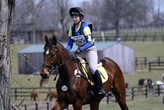 2013 Spring Bay (Tackshots) Tags: lexington crosscountry horseshow dressage eventing kentuckyhorsepark mastersonstation