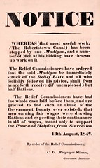 ... the said Madigan be immediately struck off the Relief Lists... (National Library of Ireland) Tags: ireland poor 19thcentury august ephemera friday 13th starvation 1840s unemployed rations famine greatfamine helpless kildare 1847 potatofamine wages leinster madigan governmentinspector angortamór nationallibraryofireland ephemeracollection reliefcommissioners robertstowncanal relieflists halfrations governmentbounty cgmacgregorskinner courtlandgeorgemacgregorskinner reliefinspectors