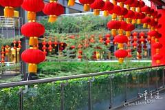 DAO-49383 ,,,,,,,,,, (Chen Liang Dao  hyperphoto) Tags: