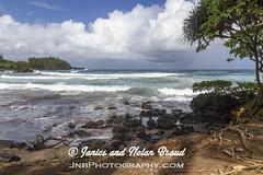 Kaihalulu Red Sand Beach on the Road to Hana JN074115 (JaniceNolan_braud) Tags: ocean beach hawaii dangerous maui pacificocean tropical roadtohana roughwater redsandbeach roughocean kaihaluluredsandbeach