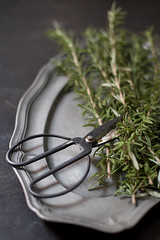 Rosemary I (Artichoke Photography) Tags: food home fruit grey still herbs passionfruit