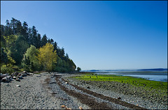 Morning Beach Walk (Martin Smith - I'm back) Tags: canada seaweed beach bc pebbles surrey crescentbeach lowtide bluff tideout beachscape explored nikon18200mmvrii nikond7000