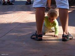 ...Very interesting... (cegefoto) Tags: feet grancanaria shoes exploring father son nikond50 vader schoenen spanje zoon voeten vaderenzoon ontdekking fotoketting fotoklik