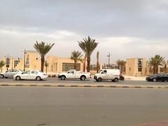 King Abdullah Park (Mr. ferrari3000) Tags: park trees king day cloudy palm saudi arabia riyadh abdullah malaz