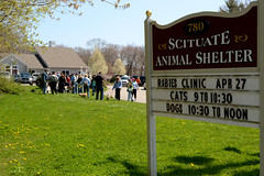 DSC_0815a (Ali Crehan) Tags: dog cat ma event april shelter clinic rabies scituate 2013 042713