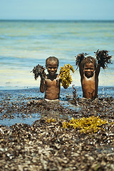 MDG-Ifaty-1201-228-v1 (anthonyasael) Tags: ocean africa blue girls sea shirtless portrait people playing black seaweed color beach nature water girl smile smiling vertical kids naked children fun island happy kid sand funny colorful child barechested african turquoise indianocean port
