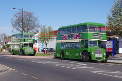 Eastern National Bristol Lodekka LD5G / ECW HH 2400, XVX19 and HH 2849, NTW 942C on service 251 running day 2013 (EastBeach68) Tags: bristol hh ecw 2400 lodekka easternnational 2849 flf6g easternnationalomnibuscompany ld5g ntw942c xvx19 251runningday easternnational251runningday2012 southendlondonwoodgreen251 easternnationalheritage easternnationalomnibuscoltd easternnationalbus