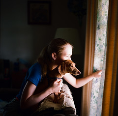 Lauren & Strudel (mat4226) Tags: light dog color cute lauren film window zeiss puppy square t dead photography is saturated key kodak low adorable dachshund hasselblad negative carl 500c medium format 100 weiner f28 strudel dapple doxie 80mm ektar bagley c41 believeinfilm