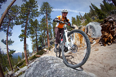 Armstrong Connector Trail (TAMBA Tahoe) Tags: california mountain mountains bike track ride nevada trails tahoe sierra trail single biking area recreation rider association tamba