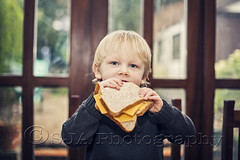 Sandwich (@SJA Photography) Tags: boy cheese child eating sandwich eat