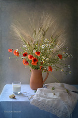 Summer flowers and milk (elisevna) Tags: stilllife glass bread milk wheat towel poppy jug wildflowers pitcher grane nikonflickraward