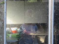 Monday, 25th, 2016, Time for clearing the garden IMG_3141 (tomylees) Tags: essex morning summer july 25h monday 2016 carol garden reflection window
