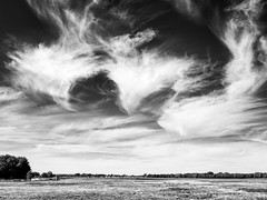 oxford-1-230816 (Snowpetrel Photography) Tags: olympusem5markii olympusm17mmf18 oxford portmeadow blackandwhite clouds cloudscapes landscapes monochrome sky summer england unitedkingdom