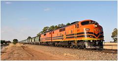 GM memories - 2 (Bingley Hall) Tags: australia southaustralia twowells transport train transportation rail railway railroad diesel engine locomotive freight grain gwa geneseewyomingaustralia commonwealthrailways 567c clydeengineering emd bulldog streamliner railpage:livery=39 gm47 railpage:class=41 railpage:loco=gm47 rpaugmclass2 rpaugmclass2gm47