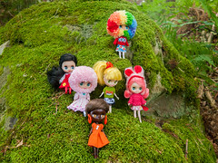 The Obnoxious Six! (Helena / Funny Bunny) Tags: funnybunny blythe petite yarnhead yarnheads littleretromama bettyannsdiner