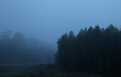 (elisecavicchi) Tags: dawn early first light dark obscure grainy shadow silhouette layer atmosphere mist fog cloud cape breton nova scotia wild canada park forest woods spruce north summer