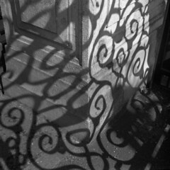 gate shadow (ds6419) Tags: agfa isolette folding folder 6x6 medium format analog film camera kodak tmax 400 iso black white negative gate shadow light shade pattern