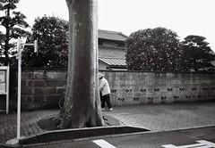 (lemonhats) Tags: olympusmjupanorama olympus3535 fujifilmneopanacros100 kodakd76 classiccamera vintagecamera automatic 35mmcompact autofocus 35mmf35 fixedlens primelens wideprime iso100 35mmfilm blackandwhite printfilm homedevelopment legacyphotography analoguephotography filmphotography filmisnotdead filmisalive shootfilm believeinfilm filmcommunity fpper walking nerimaku tokyoto japan candid