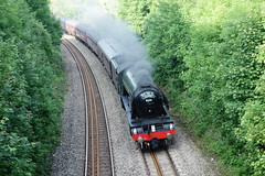 Flying Scotsman (Dave Roberts3) Tags: gwent wales newport caerleon train locomotive steam railway transport flyingscotsman 60103 trees green blueribbonwinner
