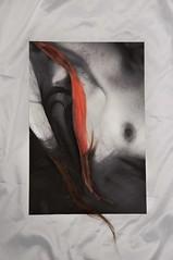 (pernille.kjaer) Tags: nude nudeart blackandwhite hair blood period sheets woman feminism femininity
