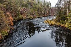 Pieni Karhunkierros (Tuomo Lindfors) Tags: kuusamo suomi finland topazlabs clarity dxo filmpack pienikarhunkierros oulangankansallispuisto oulankanationalpark kitkajoki kitkanjoki joki river niskakoski koski rapids vesi water