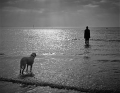 Another place (lesleyw8) Tags: beach dog anthony gormley another place formby crosby sunset