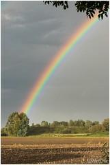 Regenboog (HP017140) (Hetwie) Tags: zon rainbow regenboog rain sun weer regen weather helmond noordbrabant nederland