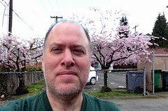 Day 447 - Day 81: Me and the blossoms (knoopie) Tags: selfportrait me march doug year2 day81 picturemail iphone knoop day447 365days 2013 knoopie 365more 365daysyear2