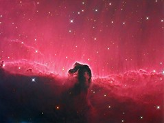 The Horsehead Nebula (Barnard33) (Terry Hancock www.downunderobservatory.com) Tags: camera sky monochrome night stars photography mono pier back backyard fotografie photos thomas space shed science images astro apo m observatory telescope astrophotography orion astronomy imaging 12 ccd universe f8 ic434 cosmos horsehead technologies paramount luminance lodestar teleskop astronomie byo refractor deepsky f55 astrograph barnard33 autoguider starlightxpress astrotech ritcheychrtien tmb92ss mks4000 gt1100s qhy9m