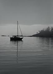 Waiting (Prestidigitizer) Tags: ocean trees sea bw water monochrome misty fog sailboat coast foggy victoria vancovuerisland pentaxk10d pentaxda50135mm mygearandme mygearandmepremium