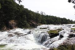 Pykara Waterfall,Ooty,Tamil Nadu