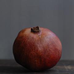 pomegranate once more (postbear) Tags: red food fruits fruit square skin pomegranate exotic pomegranates peel edible robfordasshole destroycraigslist letsgocommitsomecrimes robfordisanasshole robfordandstephenharperaredisgustingbigots robfordisalyingsackofshit allconservativesarefilth likeallbulliesrobfordisachickenshitcoward robfordisafraidofeverything robfordisastupidbitch marywalshformayororprimeminister thenewmapfunctionisterrible robfordhasneonazisforfriends foundoutreadingisdifficult robfordisadisgustingfuckingthief thenewuploaderisalsoterrible helpourformermayorisastupidclown formermayorrobfordlikescottaging call911theformermayorsbeatinghiswifeagain richwhiteconservativesbuyjusticeyetagain robfordsexuallyassaultswomen