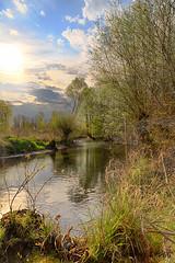 Fort Rhnane (Patrick d'Alsace) Tags: france eau patrick alsace arbre printemps fort flore zaugg rgionalsace eos5dmark3 patrickzaugg