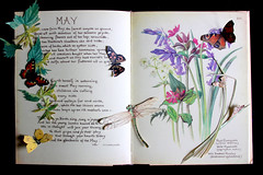 May (My World Of Creations) Tags: wood flowers wild sculpture plants white plant black flower colour bird art college nature leaves birds animal animals illustration forest butterfly paper landscape typography photography zoo book design landscapes sketch photo leaf berry woods graphics university flickr artist photographer berries bright pages designer text sketching butterflies illustrations insects books sketchbook hills creation photograph papers page twig environment create colourful sketches creatures twigs bold writtle tumblr