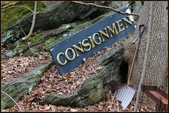 Consign? (Read2me) Tags: she old abandoned broken sign word odd outofplace pregame x2 cye gamewinner friendlychallenges thechallengefactory gamex2winner