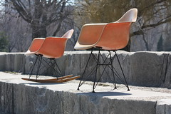 Exhilarating Early Eames Salmon RAR Rocker for Herman Miller (U.S.A., 1950's) (Kinzco) Tags: winter summer baby fall vintage spring toddler infant midwest modernism craigslist retro lakemichigan rocker newborn redlabel cranbrook georgenelson hermanmiller interiordesign lakefront seafoamgreen zinc zenith rar midcenturymodern luminaire danishmodern venicecalifornia harrybertoia charlesrayeames jensrisom midmod zeelandmichigan elephantgrey kennyk lawrencepeabody k2modern chicagomidcenturymodern hockeypuckshockmounts