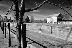 Manchester barn 02... (tbower) Tags: ohio barn geotagged nikon raw nef farm des cs5 nikongp1 niksep nikkkor24120f4vr