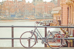 "Bicycle In Amsterdam • <a style=""font-size:0.8em;"" href=""https://www.flickr.com/photos/41772031@N08/8685139873/"" target=""_blank"">View on Flickr</a>"