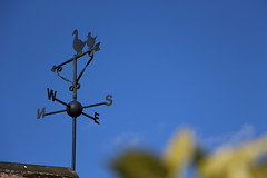 Weather Vane (tonypreece) Tags: blue sky weather day village ducks clear vane nsew eastbierley