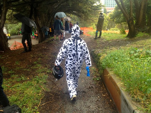 stock   Big Wheel Race 2013: Cow Man Walks Down Path