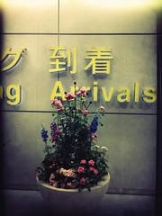 Yay (meeeeeeeeeel) Tags: travelling japan tokyo airport tired vacations kitcam uploaded:by=flickrmobile flickriosapp:filter=nofilter