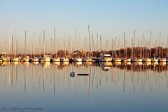 Mirrored (bemcgowan) Tags: toronto ontario canada reflection mirror boat reflect sail lakeontario